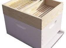 کندو عسل چوبی کف باز
