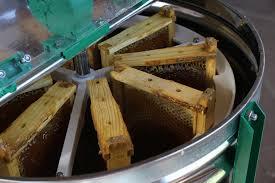 انواع دستگاه عسل گیر