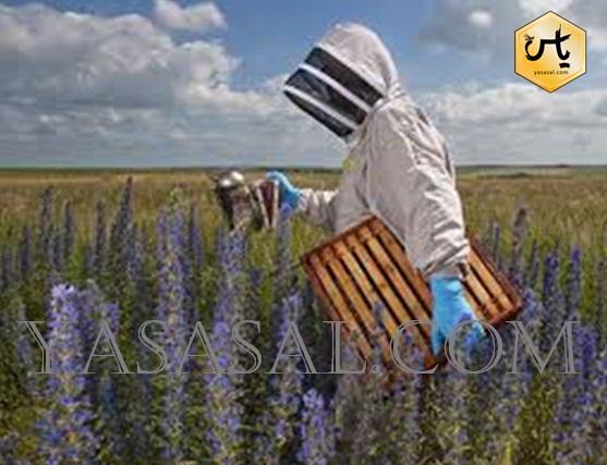انواع وسایل زنبورداری