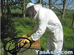 لباس زنبورداری دوتکه