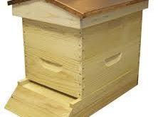 خرید یک کندوی عسل