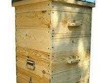 فروش عمده کندو عسل