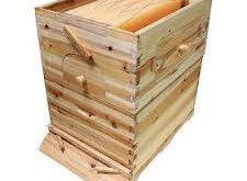 عرضه کندو عسل چوبی