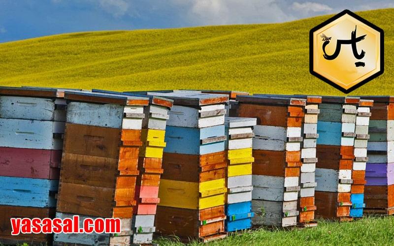 فروش ویژه لوازم زنبورداری