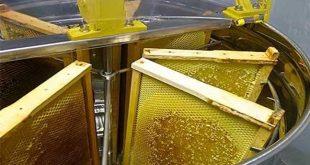 تجارت ابزار زنبورداری