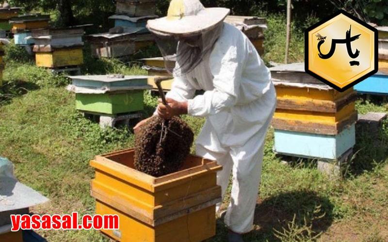 فروشگاه لوازم زنبورداری